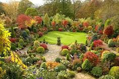 what a nice grove