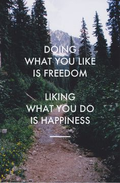 Doing what you like is Freedom, liking what you do is Happiness ..