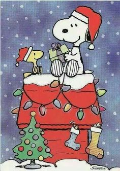 Snoopy and Woodstock! I love Snoopy and Charlie Brown Snoopy Love, Snoopy Feliz, Snoopy E Woodstock, Charlie Brown Und Snoopy, Peanuts Cartoon, Peanuts Gang, The Peanuts, Christmas Time Is Here, Christmas Art