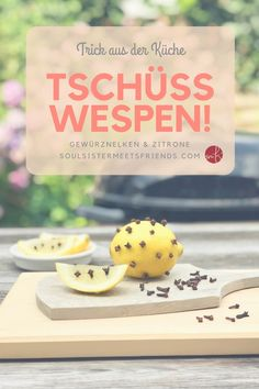 What helps against wasps? Cloves and lemon-Was hilft gegen Wespen? Gewürznelken und Zitrone What helps against wasps? A kitchen trick: cloves and lemon! Tips And Tricks, Hydrangea Seeds, Cleaning Baseboards, Washer Cleaner, Vacuum Cleaner Accessories, Clean Fridge, Diy Projects For Beginners, Chicken Feed, Fun Hobbies