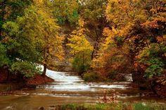 Diversas - Imagens lindas de outono