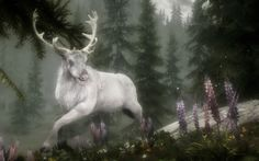 The white stag in Celtic myth is a sign that the other world is near.   As my brother Steve a...