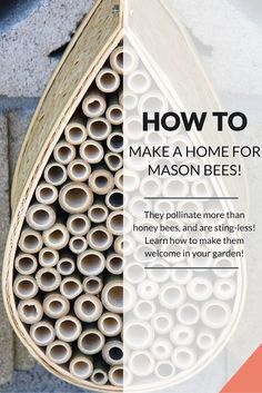 Mason bees like to live in areas with lots of nooks and crannies.  An old wood pile or dead tree is their 'natural' habitat, but a homemade bee house or a bee house from the market are great substitutes to help attract them.  Here are some tips for choosing the perfect location for your B&B: