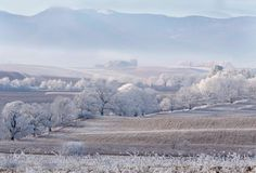 winter by kusoksveta #nature #mothernature #travel #traveling #vacation #visiting #trip #holiday #tourism #tourist #photooftheday #amazing #picoftheday