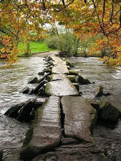 The Crossing - Ancient bridge over the ford at Tarr Steps, Devon, England. A truly peaceful and quiet retreat in the English countryside.