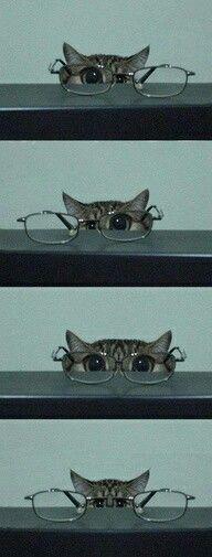 Lol...so cute:)