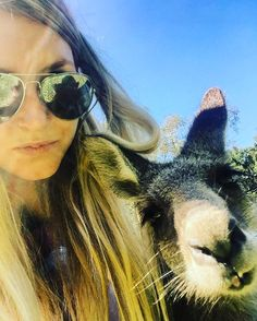 First kangaroo selfie #kangaroo #currumbinwildlifesanctuary #currumbin #animalselfie #pout #travels #australia #wildlife #wildlifephotography #adventure #ilovekangaroos by djbamalam http://ift.tt/1X9mXhV
