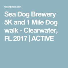 Sea Dog Brewery 5K and 1 Mile Dog walk - Clearwater, FL 2017   ACTIVE