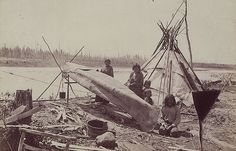 Aboriginal women mending a birchbark canoe at the North-West Angle.