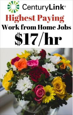 Work from Home Jobs Highest Paying - This Work from Home Job Pays You up to $17 an hour, Plus Full Benefits for All Your Family. Work from Home Jobs Highest Paying and Hiring Now.