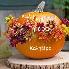 Mini Pumpkins, Fall Pumpkins, Halloween Pumpkins, Pumpkin Centerpieces, Centerpiece Decorations, Pumpkin Display, Art Mignon, Pumpkin Door Hanger, Creative Pumpkins