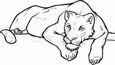 10 best modern restroom signs images on pinterest acrylic colors 2001 Monaco Cheetah how to draw a lioness step by step safari animals animals free
