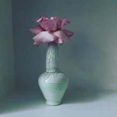 Photo by @hughstewartgallery Vase by @matthiasjosefkaiser