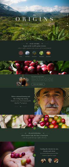 This is our daily Website design inspiration article for our loyal readers. Every day we are showcasing a website design ideas whether live on app stores or only designed as concept. Site Web Design, Design Sites, Page Design, Travel Website Design, Food Web Design, Design Design, Website Layout, Web Layout, Layout Design