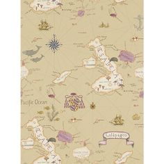 Buy Sanderson Galapagos Wallpaper, Spice, DVOY213363 Online at johnlewis.com