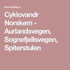 Cyklovandr Norskem - Aurlandsvegen, Sognefjellsvegen, Spiterstulen