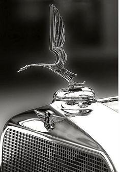 The Heron- LaSalle Mascot (1930)  used on both Cadillac and LaSalle models between 1930 and 1932. It was designed by John W. Hession, Jr.