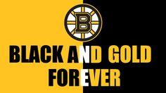 Boston Bruins hockey is black and gold forever! Hockey Girls, Hockey Mom, Hockey Teams, Hockey Rules, Hockey Players, Ice Hockey, Sports Teams, Boys, Funny Hockey