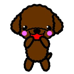 Available Toy Poodle Puppies - Mini Poodle Puppies Poodle Puppy Miniature, Mini Poodle Puppy, Teacup Poodle Puppies, Tiny Toy Poodle, Poodle Puppies For Sale, Tea Cup Poodle, Poodle Mix, Toy Puppies, Morkie Puppies