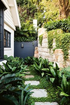 This impressive garden makeover cleverly links the terrace and pool area with an inviting entertaining zone. Tropical Garden Design, Tropical Backyard, Japanese Garden Design, Garden Landscape Design, Backyard Landscaping, Garden Modern, Modern Gardens, Tropical Gardens, Tropical Landscaping