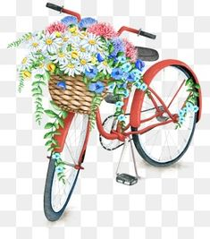 Watercolor Turquoise Bicycle With Beautiful Flower Basket - Royalty-free Cycling stock illustration Bicycle Drawing, Bicycle Painting, Bicycle Art, Bicycle Basket, Watercolor Red, Watercolor Images, Watercolor Paintings, Bicycle Illustration, Free Vector Art