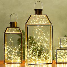 Stargazer lights #shopterrain