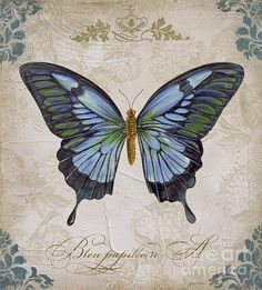 I uploaded new artwork to plout-gallery.artistwebsites.com! - 'Bleu Papillon-a' - http://plout-gallery.artistwebsites.com/featured/bleu-papillon-a-jean-plout.html
