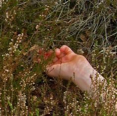 Where there are flowers, be there love Spring Awakening, Green Gables, Rowan, Ethereal, Just In Case, Flora, At Least, Cottage, In This Moment