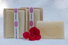 Tuhý šampon s vůní růžového geránia