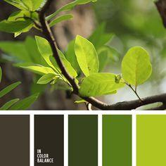 Цветовая палитра №3363