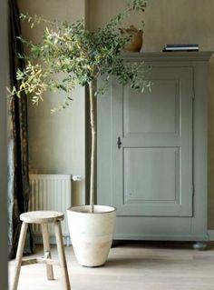 Sage Green Decorating Ideas | Domino