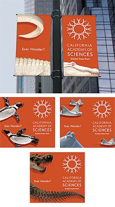 Cal Academy of Sciences reopening banners. I like this double-banner… Zoo Signage, Wayfinding Signage, Signage Design, Bunting Design, Flag Design, Outdoor Signage, Outdoor Banners, Environmental Graphics, Environmental Design