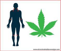 Fibromialgia y cannabis