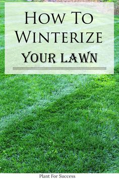 Learn how to winterize your lawn so it has beautiful green grass in the spring. It's important to know when to winterize your lawn and what product you should use for the last fertilizer treatment. Contrary to belief you do not need a lawn fertilizer that's labled 'winterizer'. #fallfertilizer #winterfertilizer #lawncare