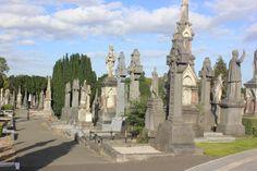 One Day in Dublin: Travel Guide on TripAdvisor