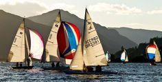 Sailing boats in Cowal