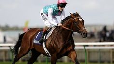 Frankel the wonder horse - story behind equine Usain Bolt.  By Frank Keogh BBC Sport - http://www.bbc.co.uk/sport/0/horse-racing/19948839