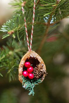 walnut christmas ornament