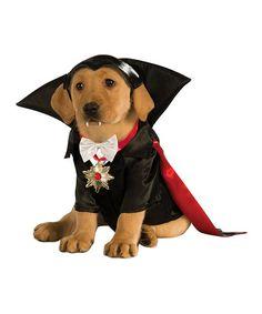 Love this Vampire Pet Costume on #zulily! #zulilyfinds