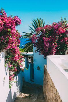 Island of Panarea; part of the Aeolian islands in the Tyrrhenian Sea of the Mediterranean.