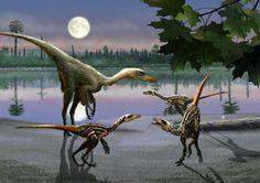 *Troodon. Artwork by Beate Basner