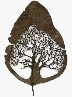 Lorenzo Duran...beautiful art carved into an ordinary leaf....