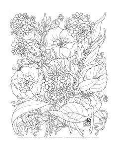 Adulte Coloring Pages un fouillis de fleurs par emerlyearts