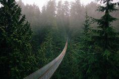 benjaminheath:  Above the Capilano River, British Columbia.