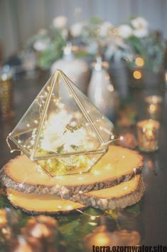 Super ideas for succulent wedding table decor terrarium centerpiece Christmas Table Centerpieces, Unique Centerpieces, Wedding Table Centerpieces, Flower Centerpieces, Wedding Decorations, Table Decorations, Centerpiece Ideas, Wedding Ideas, Wedding Simple