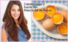 Mascarilla de huevo para hacer crecer el cabello, ¡apunta la receta!