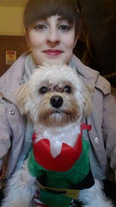 #merrychristmas ya filthy animals!