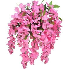 Artificial Wisteria Long Hanging Bush Flowers 15 Stems For Home,... ($40) ❤ liked on Polyvore featuring home, home decor, floral decor, fillers - pink, flowers, filler, artificial flowers, artificial flower arrangement, artificial flower stems and silk flower bouquets