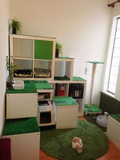 DIY Cat Apartment, Storage and Play Area.. I could easily turn that into a rabbit world :)