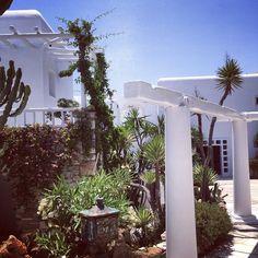 #Kivotos #Mykonos #Greece #GreekIsland #Paradise #HotelLife #TravelLife Katrina Woolverton | Gallery
